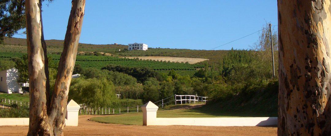 Hamilton Russell Estate