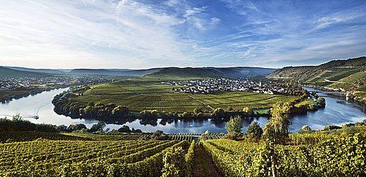 Drink German Wine