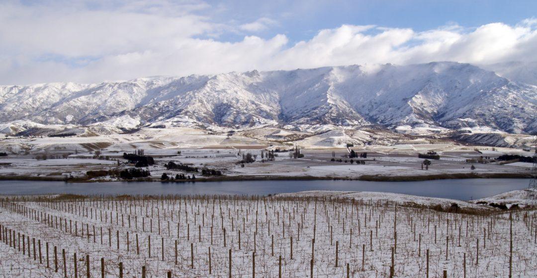 Central Otago Pinot Noir