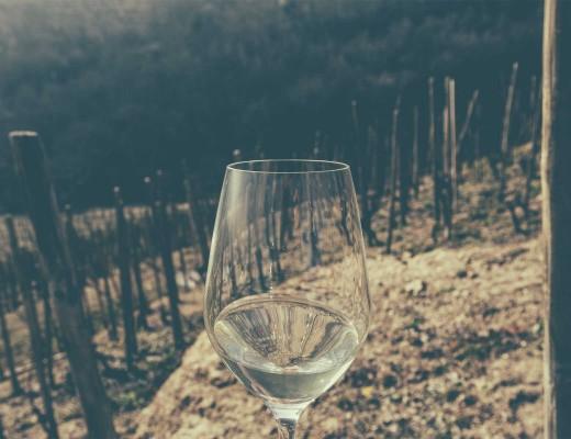 glass of white wine in rhone