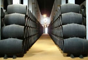 vinos_jerez_sherry_wines_bodega_crianza