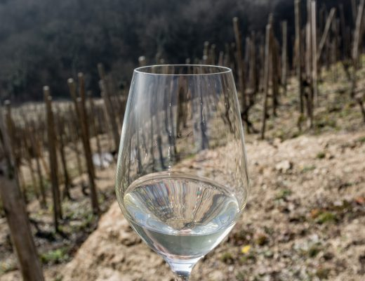 purity natural wine