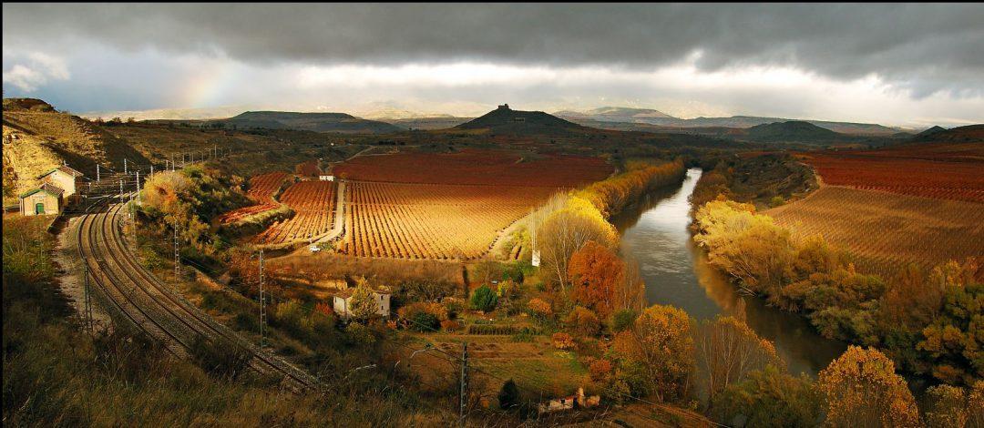 Rioja Vineyards