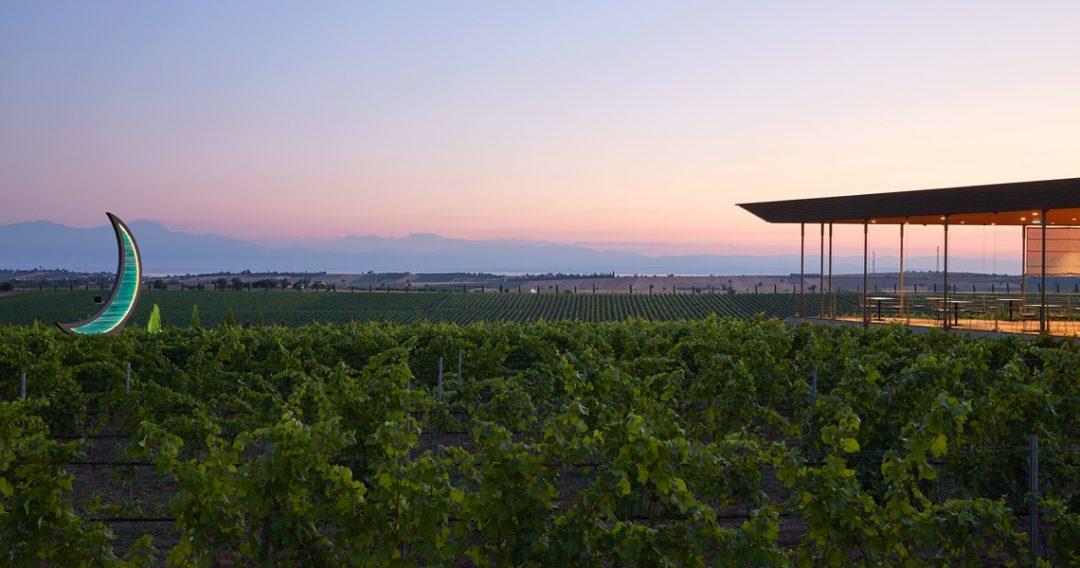 Ktima Winery Vineyards