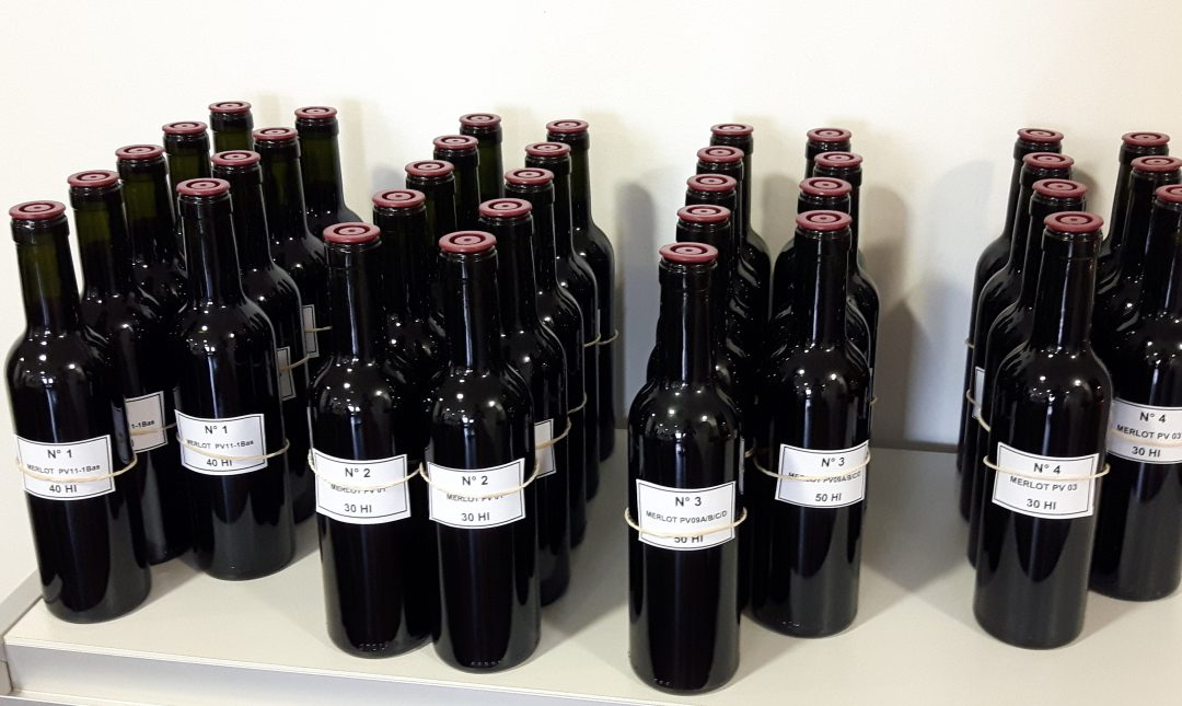 Pomerol wine blending