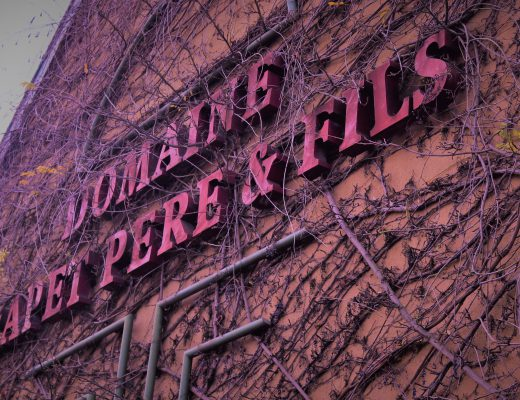the wines of domaine trapet