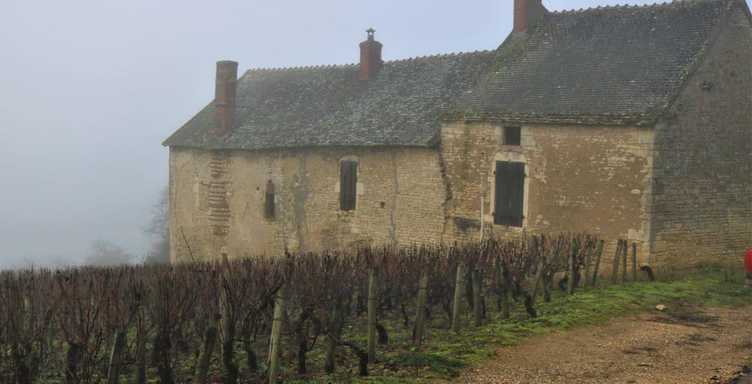 the wines of michel sarrazin
