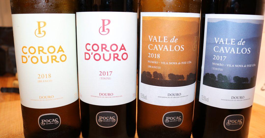 affordable wine finds