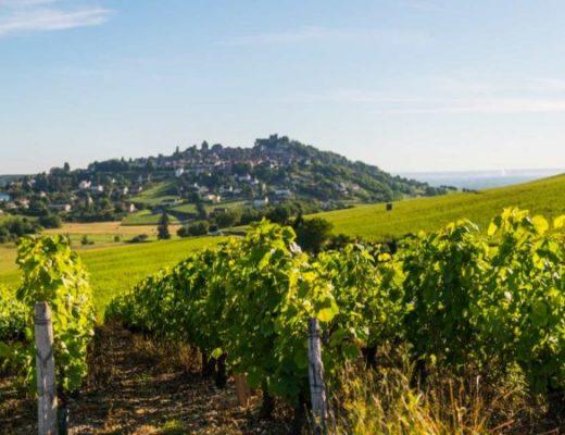 Wine region stereotypes