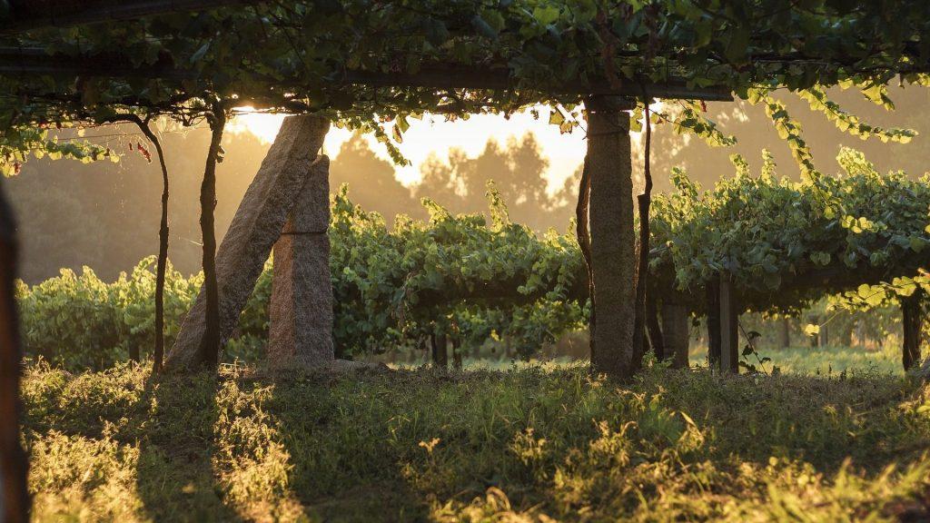 Rías Baixas vineyards Ribeira do Ulla